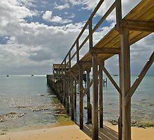 Boardwalk by randmphotos