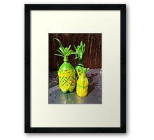 PET Pineapples Framed Print