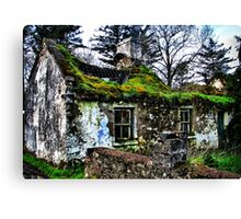 Grow Your Own Roof Canvas Print