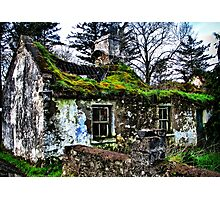 Grow Your Own Roof Photographic Print