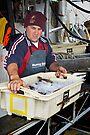 Unloading the catch at Eden by Darren Stones