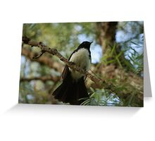 Wagtail in the Brush Greeting Card