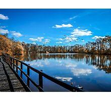 Nature Reserve Photographic Print