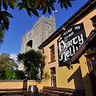 Bunratty Castle and Durty Nelly's Pub , County Clare, Ireland by Noel Moore Up The Banner Photography