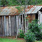 Slab Timber Charm by Bev Woodman