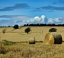 Countryside hay stack landscape by upthebanner
