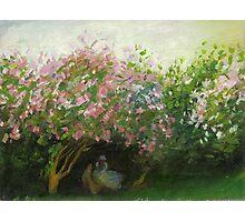 Claude Monet, Lilac, cloudy (author's copy) Photographic Print