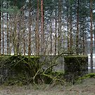 15.4.2015: Old Defense Equipment by Petri Volanen