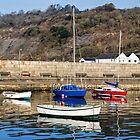 Lyme Regis Harbour - April by Susie Peek