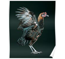 Brown Red Modern Game Hen Poster
