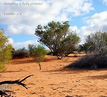 Standing on Holy Ground by Jan Stead JEMproductions