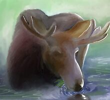 Moose in Early Morning mist by paul boast