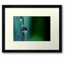 Rain Drop Framed Print