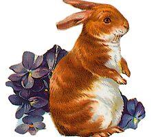 Vintage Rabbit by Jackie Popp