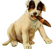 Little Bulldog by Jackie Popp