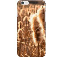 Cattails iPhone Case/Skin