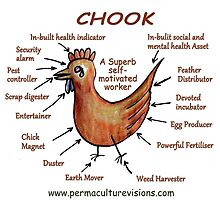 The Powerful Permaculture Chook by AprilSKelly