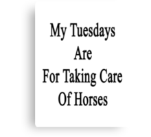 My Tuesdays Are For Taking Care Of Horses  Canvas Print