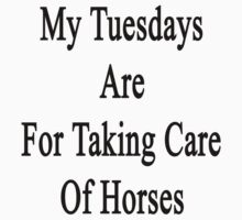 My Tuesdays Are For Taking Care Of Horses  by supernova23