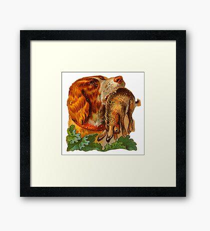 Hunting dog Framed Print