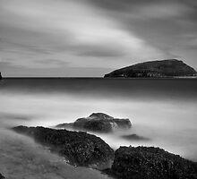 Puffin Island by igotmeacanon