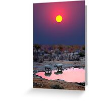 SUNSET WITH RHINOS Greeting Card