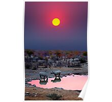 SUNSET WITH RHINOS Poster