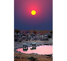 SUNSET WITH RHINOS Photographic Print