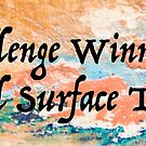 Natural Surface Textures Challenge Winner Banner by Marilyn Cornwell