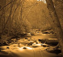 On Golden Waters by MountainHawk