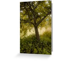 Pastel Tree Greeting Card