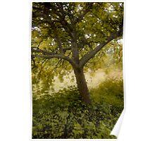 Pastel Tree Poster