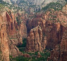 Zion Slots by Friendly Photog