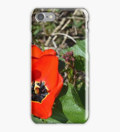 Spring Time Bloom iPhone Case/Skin