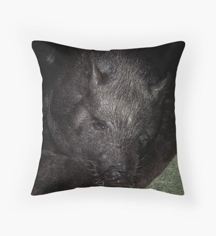 Miss Piggy For Linda Lou ....... WOOOOOOOOOO HOOOOOOOOOOOO Throw Pillow