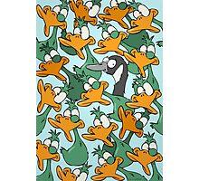 Duck Duck Goose! Photographic Print