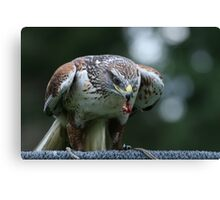 Flying Weight Canvas Print