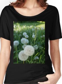 Dandelion Seed Heads In Our Pasture  Women's Relaxed Fit T-Shirt