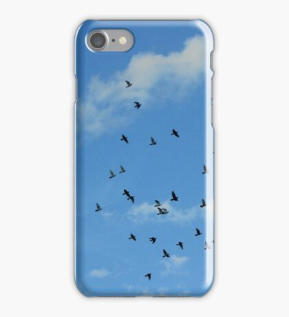 Birds migration iPhone Case/Skin