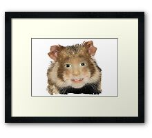 Hamster Child Framed Print
