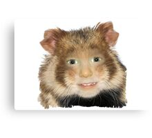 Hamster Child Canvas Print