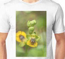Ophrys lutea Unisex T-Shirt