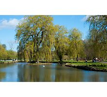 Spring Trees on the Lake: Leeds Castle Kent UK Photographic Print