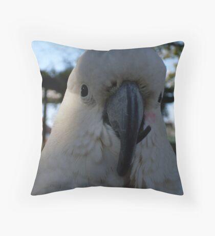 Cocky Cocky 3 Throw Pillow
