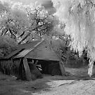 Old shed in IR by Hans Kawitzki