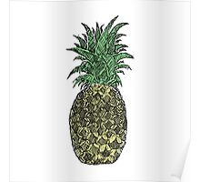 Pineapple Sketch Poster