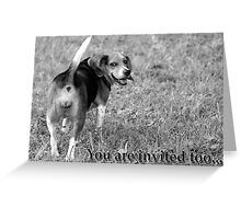 You can so kiss my.... grits! Greeting Card
