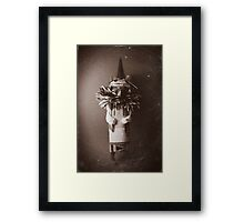 Hawk Doll Framed Print