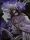 Nightwatch by Lynnette Shelley