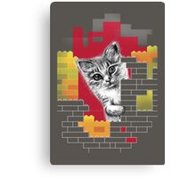 Play Cat Canvas Print